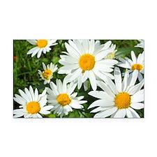 Summer daisies Rectangle Car Magnet