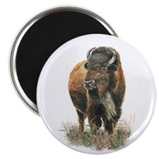 Watercolor Buffalo Bison Animal Art Magnets