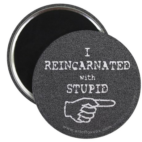 I Reincarnated with Stupid (right) Magnet