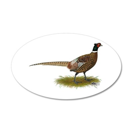Ringneck Pheasant Afield 35x21 Oval Wall Decal