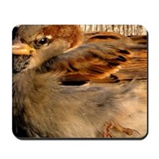 Sleepy Sparrow Mousepad