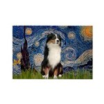 Starry - Tri Aussie Shep2 Rectangle Magnet (10 pac