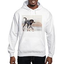 Black Lab #2 Merchandise! Hoodie