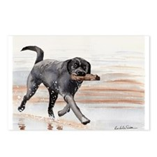 Black Lab #2 Merchandise! Postcards (Package of 8)