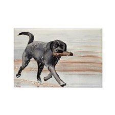 Black Lab #2 Merchandise! Rectangle Magnet (10 pac
