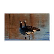 Canadian Goose Portrait's Car Magnet 20 x 12