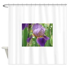 IMG_0554.JPG Shower Curtain