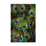 Peacock Feathers Invasion Mini Poster Print