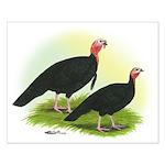 Black Turkeys Small Poster