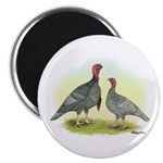 Blue Turkeys Magnet