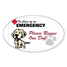 Cute Save a dog Decal