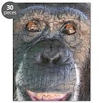 April - Save the Chimps Puzzle
