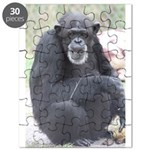Amy Puzzle