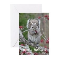 Cute Squirrels Greeting Cards (Pk of 20)
