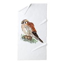 Watercolor Kestrel Falcon Bird Nature Art Beach To