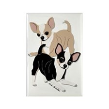 Chihuahuas Smooth Coats at Play Rectangle Magnet