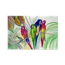 Parrots Rectangle Magnet