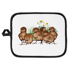 Baby Chicks Potholder