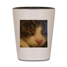 Sleeping Cat  Shot Glass