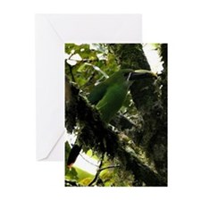 Andean Toucanet Bird Greeting Cards