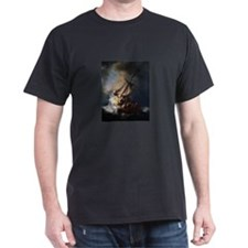 Christ In The Storm Galilee T-Shirt