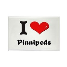 I love pinnipeds Rectangle Magnet
