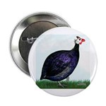 Royal Purple Guineafowl Button
