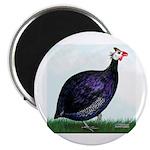 Royal Purple Guineafowl Magnet