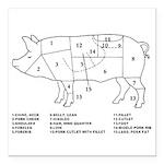 Pig Parts Square Car Magnet 3