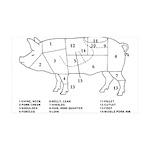 Pig Parts Wall Decal