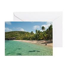 Man going snorkeling Greeting Card
