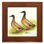 Khaki Campbell Ducks Framed Tile