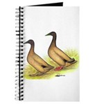 Khaki Campbell Ducks Journal