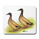 Khaki Campbell Ducks Mousepad