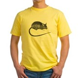 Rats Shirt (Yellow)