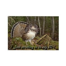 Strutting Grouse Rectangle Magnet