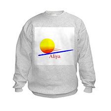 Aliya Jumpers