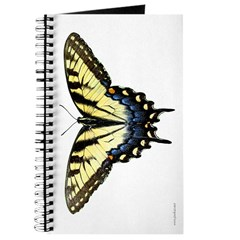 Butterfly 2 Journal