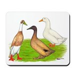 Egg and Meat Ducks Mousepad