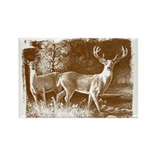 Wildlife Deers Rectangle Magnet