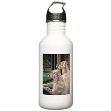 English Setter Puppies.JPG Water Bottle