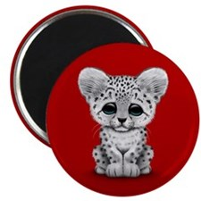 Cute Baby Snow Leopard Cub on Red Magnets