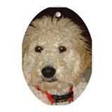 Unique Golden doodle Oval Ornament