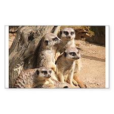 Meerkats Rectangle Decal