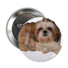 "It's all about the Shih Tzu. 2.25"" Button (100 pac"