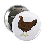 Partridge Chantecler Hen Button