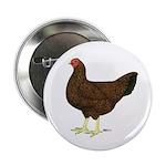 Partridge Chantecler Hen 2.25