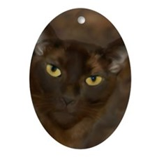 Cute Burmese Oval Ornament