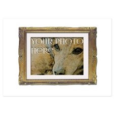 Your Photo in a Fancy Frame Invitations