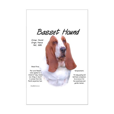 Basset Hound Mini Poster Print